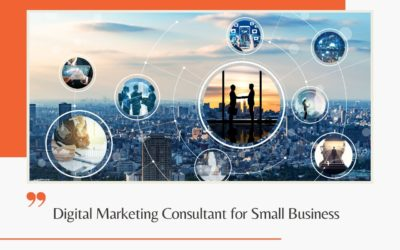 Digital Marketing Consultant for Small Business